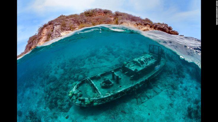 Fotografias Vencedoras Do Concurso De Fotografia Subaquática De 2016