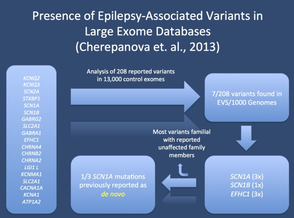 Study by Cherepanova et al. on the presence of epilepsy-related genetic variants in large exome datasets. The authors queried the Exome Variant Server and the 1000 Genomes Project for reported pathogenic variants in 19 genes known to cause epilepsy. The identified 7 variants present in these databases, including one SCN1A mutation previously reported as a de novo mutation in a patient with Severe Infantile Multifocal Epilepsy. In addition, three EFHC1 mutations appear at low frequency in…