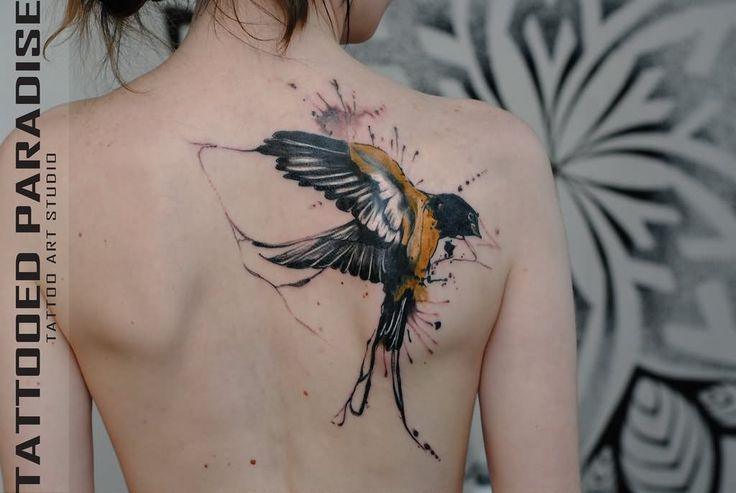 Cool Watercolor Flying Bird Tattoo On Girl Right Back Shoulder