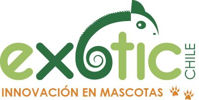 EXOTIC CHILE - VENTA DE ANIMALES EXOTICOS