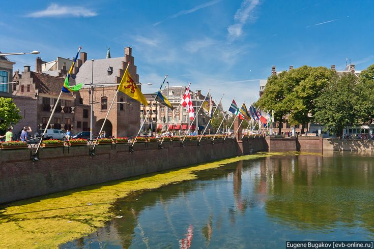 Гаага - город клерков