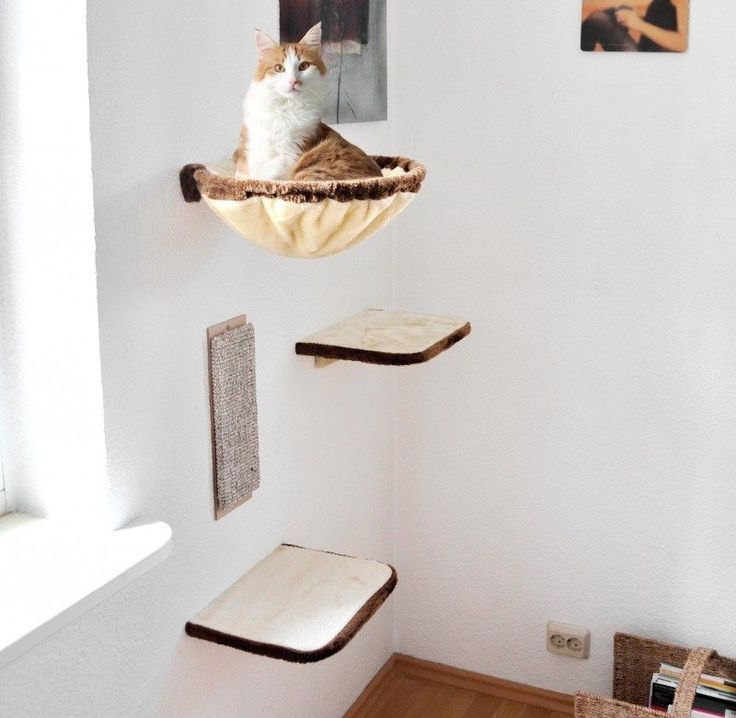 Katzenmöbel selber machen