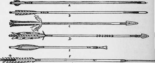 Six Sample Arrows, Showing Different Feathers.