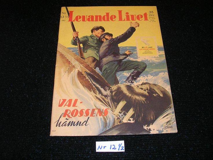 Levande Livet nr 12 1/2 år 1951. Toppex Framsida av Allan Löthman