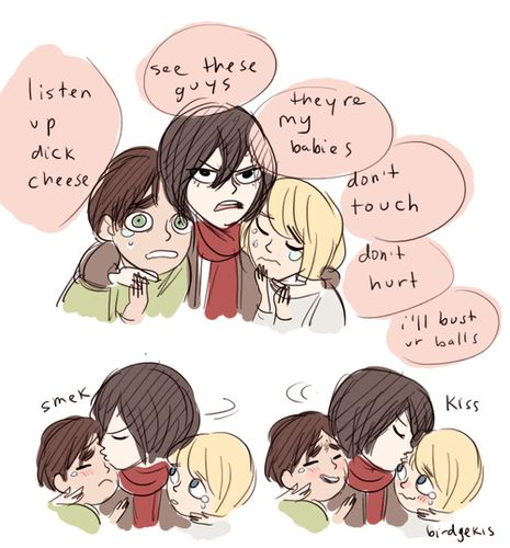 Mikasa é tipo aquela irmã mais velha, que vai te proteger, custe o que custar, por isso ela é um amor :3