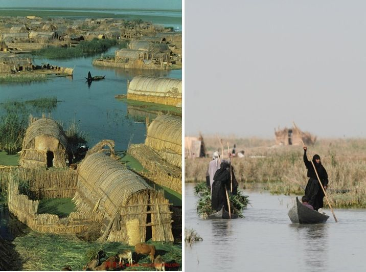 The Floating Basket Homes of Iraq  http://www.messynessychic.com/2014/11/12/the-floating-basket-homes-of-iraq-a-paradise-almost-lost-to-saddam/