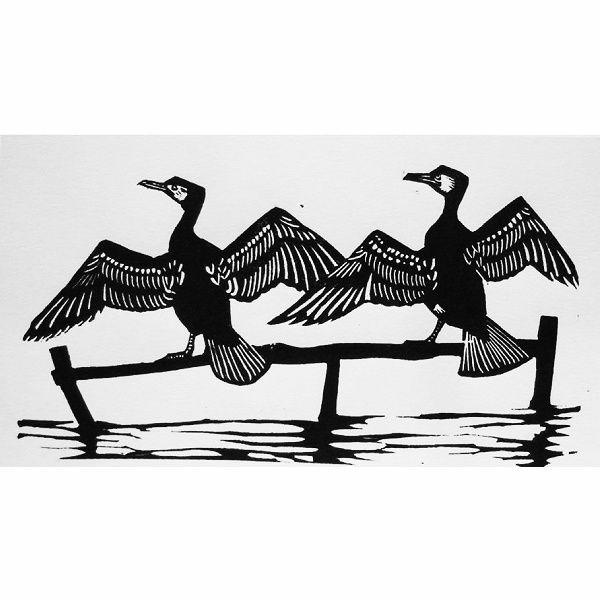 Cormorants - Linocut - Steve Duffy