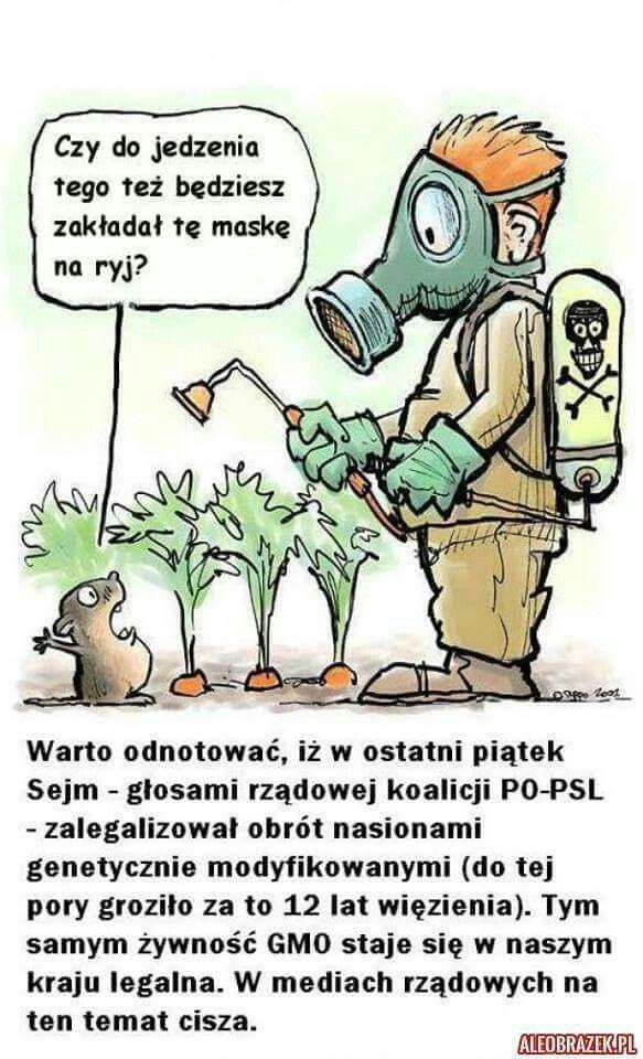 PO chcą mordować Polaków poprzez GMO.