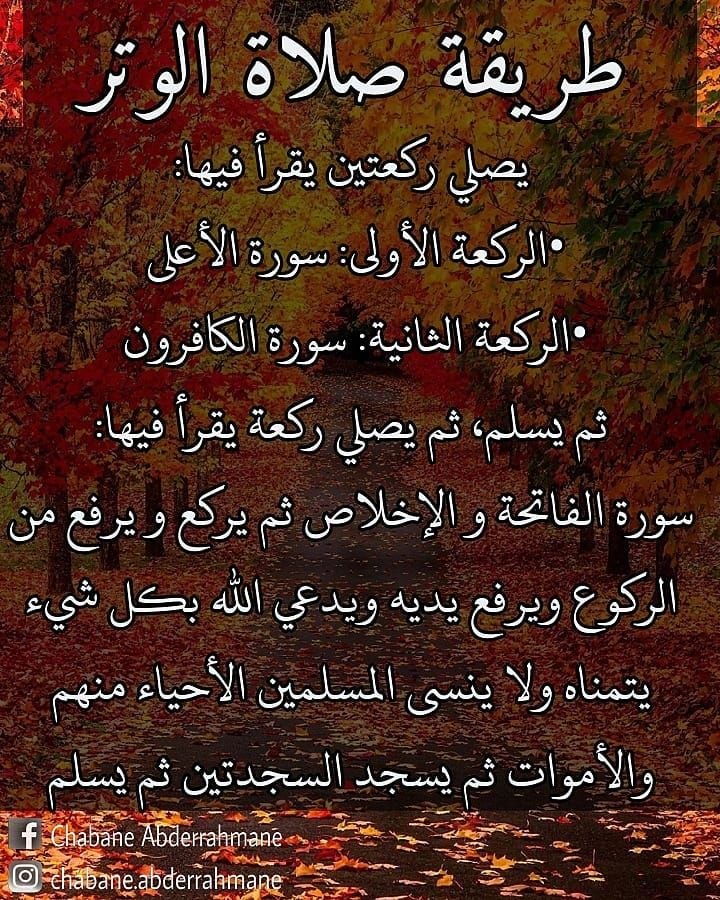 6 Likes 0 Comments Muslim مسلم Muslim Proud1440 On Instagram بعض منا لا يعرف كيفية صلاة الوتر Isl Islamic Phrases Islam Facts Islamic Love Quotes