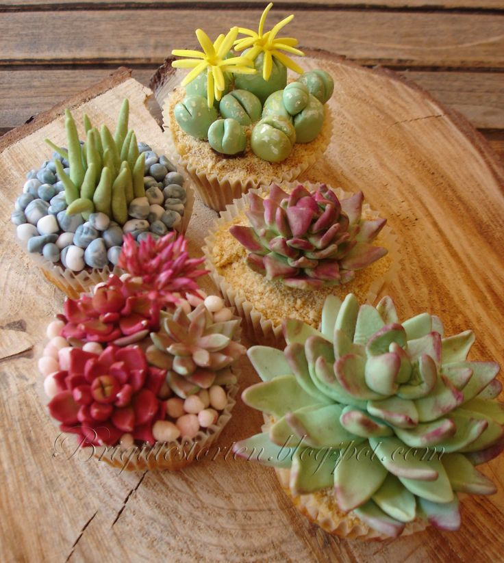 succulenten cupcakes - The cupcakes are applecake, the plants and succulents are done with fondant.