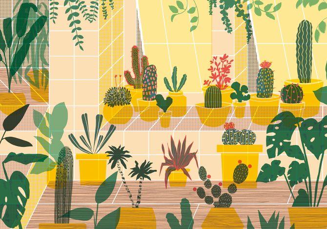 Wrap Magazine - elenaboils illustration