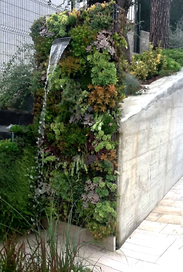 Vertical succulent garden outdoor shower to die for!   #verticalgardens