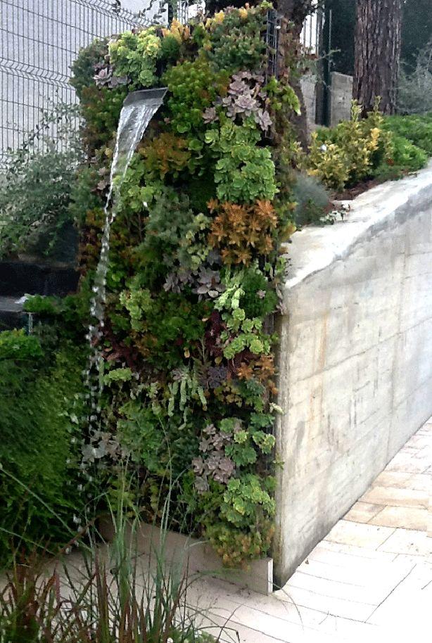 Vertical succulent garden outdoor shower to die for!   #verticalgardens