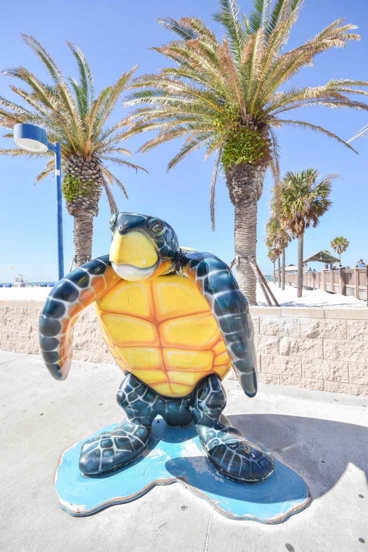 Kid-friendly Clearwater, Florida
