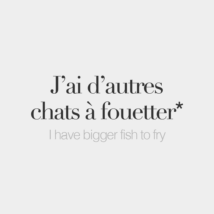 J'ai d'autres chats a fouetter = j'ai autre chose à faire (plus important) literal meaning: i have other cats to whip.