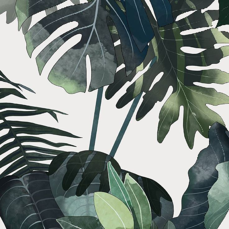 Lately I was working on a #botanical #illustration - now the preview. I can't…