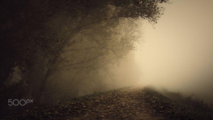 Fog series # 7 by Andrea Fraccaroli - Photo 137726207 - 500px