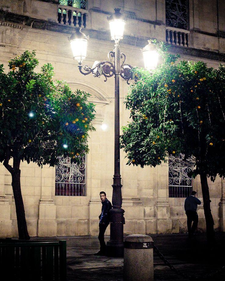 https://flic.kr/p/etgNQD | .. | Sevilla, Andalucía España Noviembre 2012  _____  Facebook | Tumblr | website