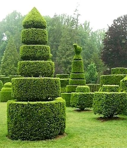 Amazing Topiary: 10866 Best Topiary Images On Pinterest
