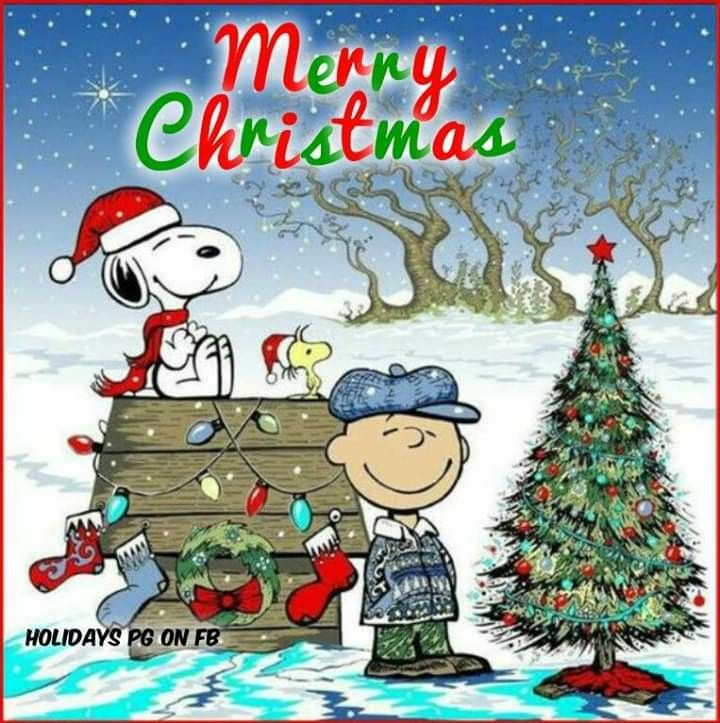 Pin By Diane On Christmas In 2020 Funny Christmas Wallpaper Christmas Wallpaper Snoopy Christmas