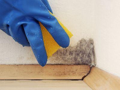 1112 besten putzen reinigen pflegen bilder auf pinterest backpulver ceranfeld reinigen und. Black Bedroom Furniture Sets. Home Design Ideas