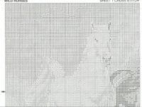 Gallery.ru / dzikie konie - dzikie konie - halla