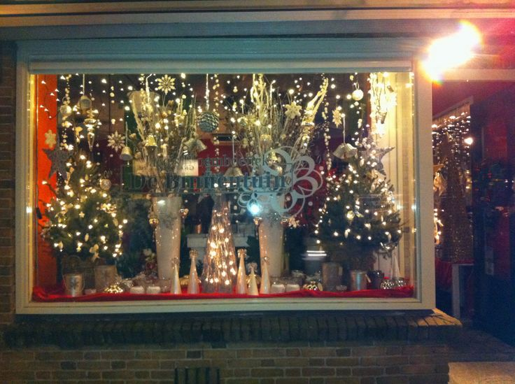 Kerst Etalage Van De Winkel Bloemenwinkel Kerst