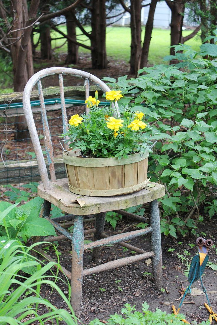 Simple marigolds in a basket. (Itsy Bits and Pieces: Down the Garden Path...)