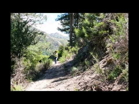 Donkey #trekking in #Sila #Longobucco #Calabria with enviromental guide. #viaggiareincalabria