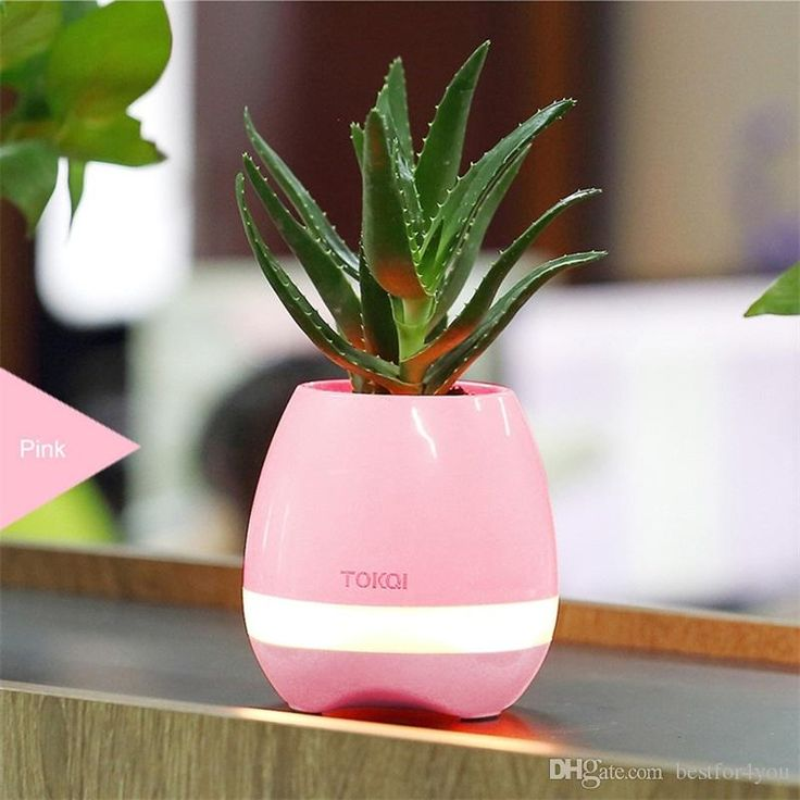 New Smart Mini Flower Pot Plastic Bluetooth Speaker Decoration With Built in Battery Office Decor Planter Colorful Light Creative Music Toy Smart Mini Flower Pot Music Planters Planters Bluetooth Speaker Online with $29.84/Piece on Bestfor4you's Store | DHgate.com