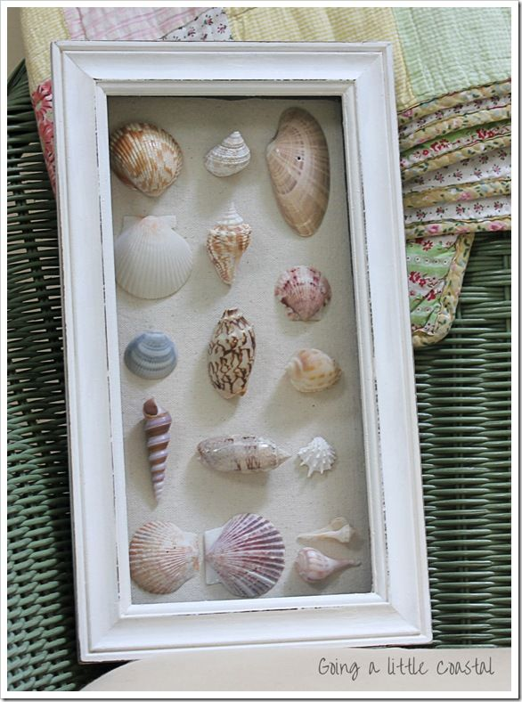 Seashell shadow box. Made 2 of these several years ago and still have up in our master bath.