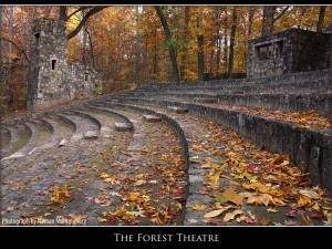The Forest Theater - UNC Chapel Hill