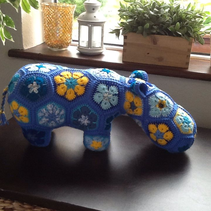 A Tipperary hippo