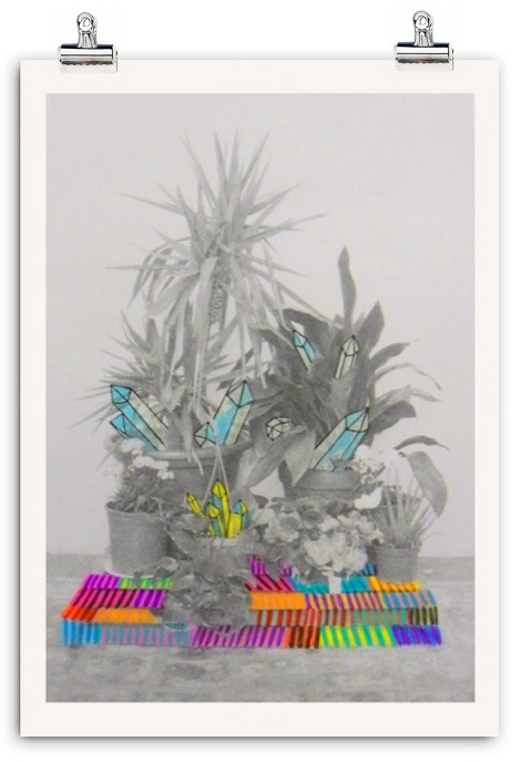My Little Garden Collection. 2012 by Azucena González, via Behance