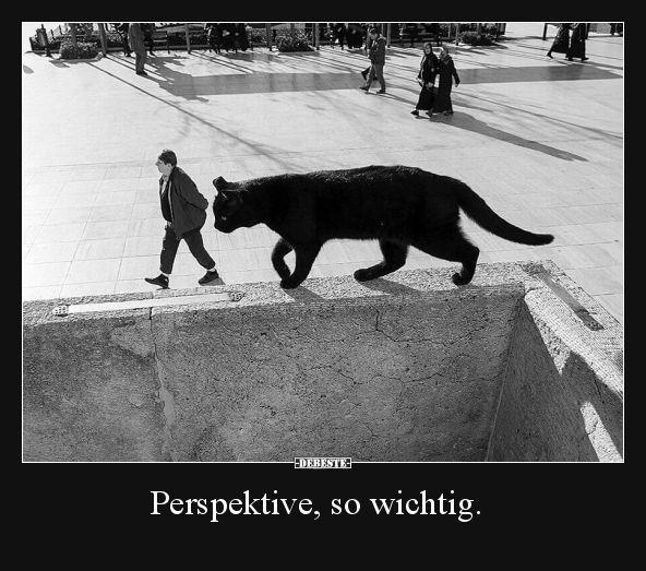 Perspektive, so wichtig … | Lustige Bilder, Sprüche, Witze, echt witzig – #Bild …   – Lustige Bilder
