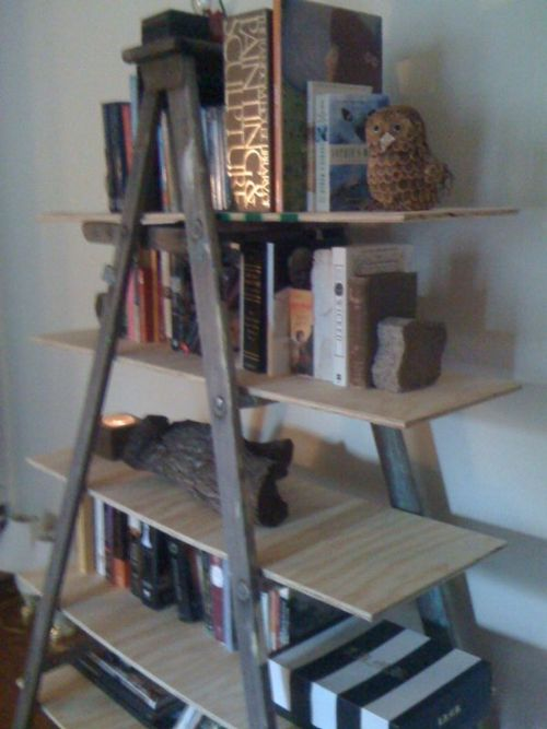 mossinthefur:    Book shelf I made out of an old ladder I found in an alley. Super easy to make. All you have to do is measure and buy the wood for the shelves!  Photo: Yours truly    Well, that is just nifty as hell. Naturally I have no place to put anything like this (We're all full up here at my casa), but I'll make one as soon as I do!