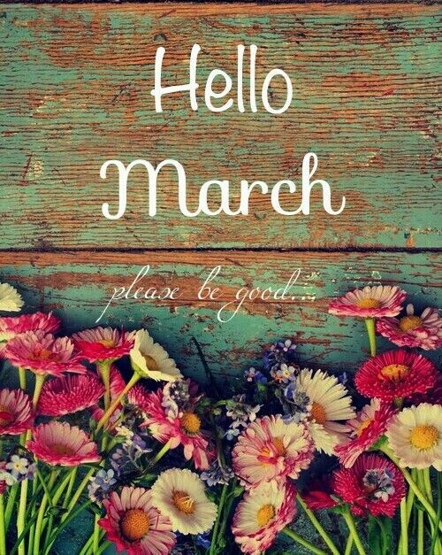 Hello March Please be Good spring flowers months march hello march goodbye february welcome march please be good