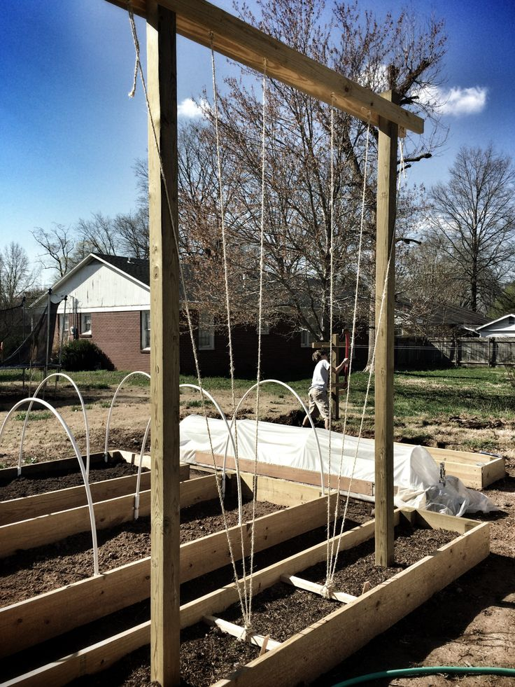 Hops Trellis Using Raised Bed And 2X2 As Anchors Can Be 400 x 300