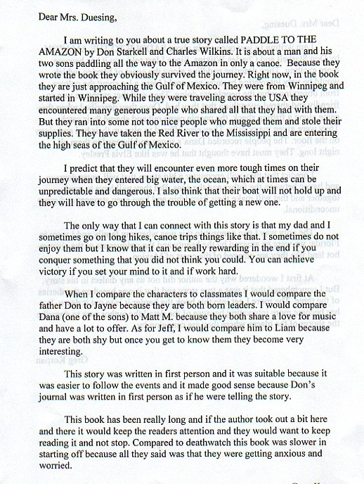 Sample essay about reading