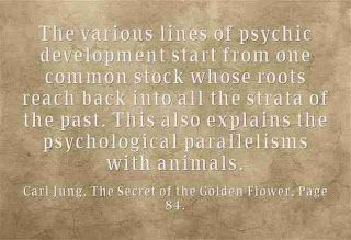 The various lines of psychic development start from one common stock whose roots reach back into all the strata of the past. This also explains the psychological parallelisms with animals. ~Carl Jung, The Secret of the Golden Flower, Page 84.