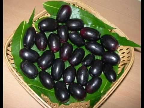 The jamun is also called Jambul in India  It's other