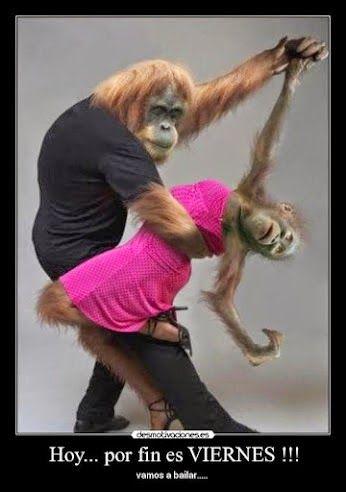 dance with me: танец с партнером