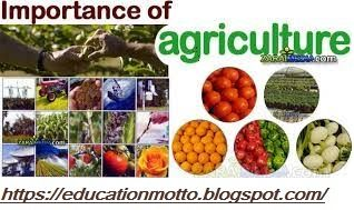Importance of agriculture Education | Agriculture Education Activities, Agriculture Education Definition, Agriculture Education Training and Courses, Importance of agriculture Education, agriculture-education.html #education #student #agriculture #traning #courses