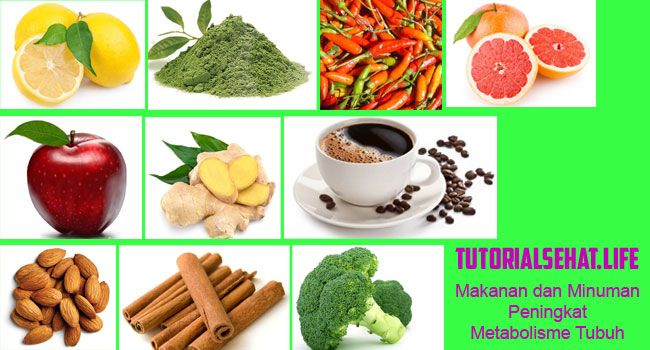 Makanan dan Minuman Sehat Yang Dapat Meningkatkan Metabolisme Tubuh Anda - Metabolisme sendiri basal dari bahasa yunani dari kata metabole yang artinya berubah. Metabolisme ini memiliki fungsi yang cukup fital seperti membantu mempertahankan fungsi dasar, pembaharuan dan perbaikan sel, sirkulasi darah, pernapasan dan keseimbangan hormonal.