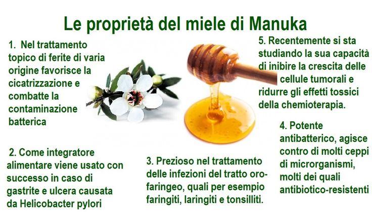 le proprietà del miele di manuka