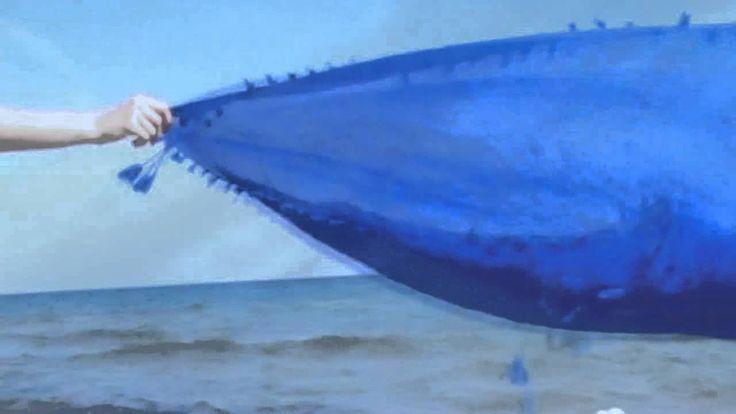 Μια θάλασσα μικρή –Διονύσης Σαββόπουλος