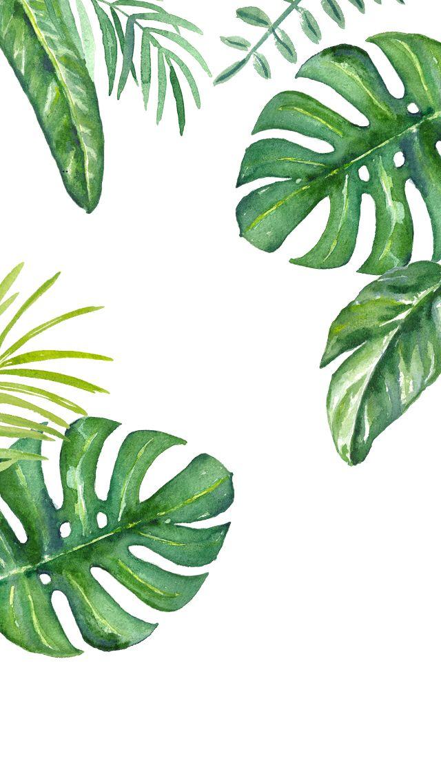Plants watercolour iPhone wallpaper
