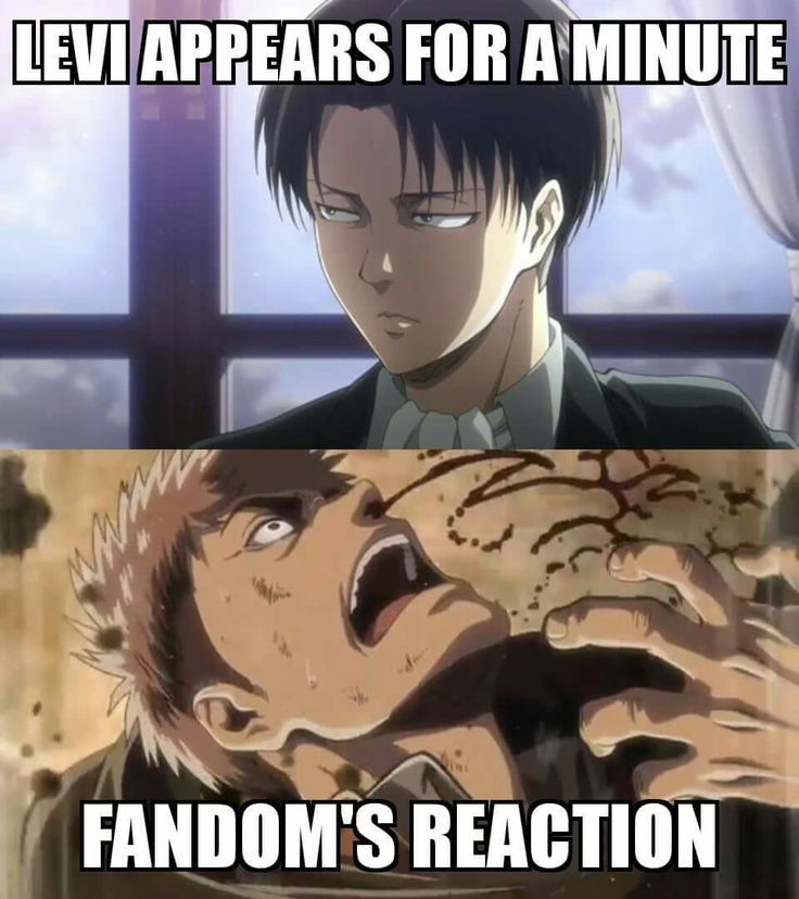 I Watch Attack On Titan Like For The Show And Rest Of That