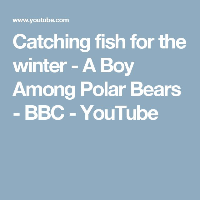 Catching fish for the winter - A Boy Among Polar Bears - BBC - YouTube