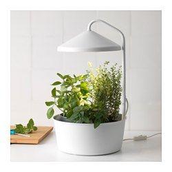 IKEA - BITTERGURKA, Planteholder med LED-vekstlys, Du kan dyrke planter innendørs hele året, også når det er lite tilgang på dagslys.Vekstlyskilden i kombinasjon med næringsstoffer og vann gir plantene dine alt de trenger for å vokse seg sterke.Planter er mottagelige for andre lysfarger enn menneskets øyne. Sammenlignet med vanlig belysning har LED-vekstlyset et annet fargespektrum, med mer blå- og rødtoner. De hjelper plantene med å vokse og trives.